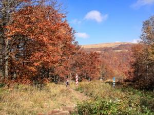Szlak na Krzemieńca biegnący wzdłuż Ukraińskiej granicy