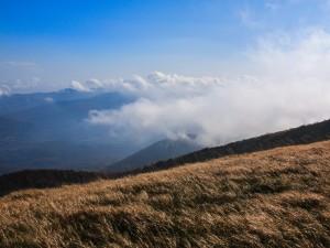Tarnica w chmurach